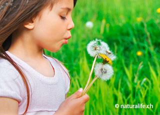 Bei der Atemtherapie steht die bewusste Wahrnehmung, des Atems, und des Atemrhythmus im Mittelpunkt.