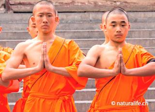 Chinesische Quantum Methode (CQM) – Shaolin-Mönche demonstrieren auch heute noch Ihre grundlegenden Erkenntnisse der menschlichen Energie.